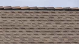 Shake Roof Life Expectancy Cedar Shingle Stock Photos
